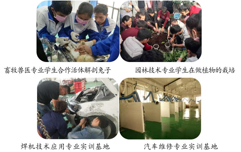 新疆和田:职业教育助力教育脱贫